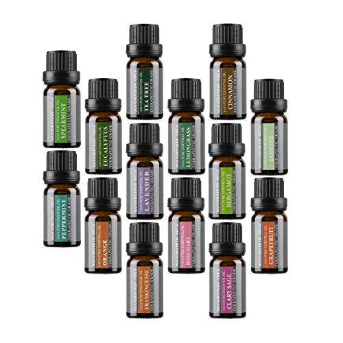 Die Top 14 Aromatherapie Öle – 100% reine ätherische Öle Geschenkset 14 x 10 ml von WASSERSTEIN