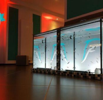 Erfahrungsberícht Fish Spa Peeling Entspannung für die Füße | Mein Erfahrungsberícht über ein tierisches Pediküre Erlebnis. Fish Spa Peeling - Entspannung für die Füße und Seele