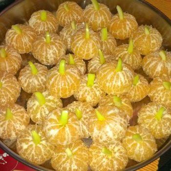 DIY Kürbis mit Mandarinen und Apfelstückchen selbstgemacht für Halloween Party | Gruselige Tipps & schaurige Ideen für deine Halloween Party